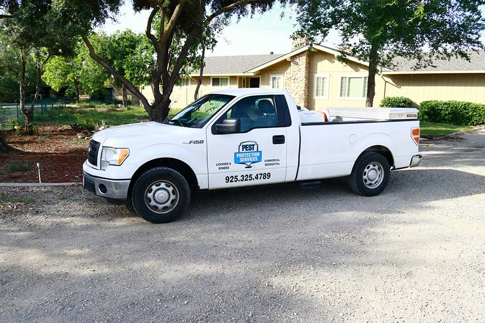 brentwood-pest-control